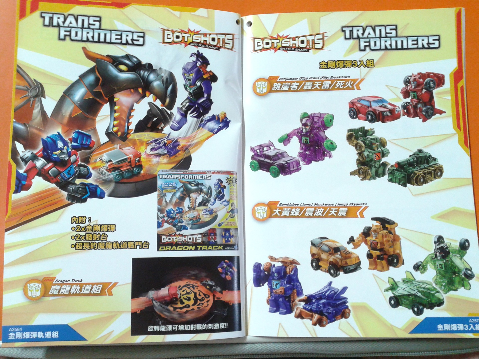 New Taiwan TF Catalog-20130320_164413.jpg