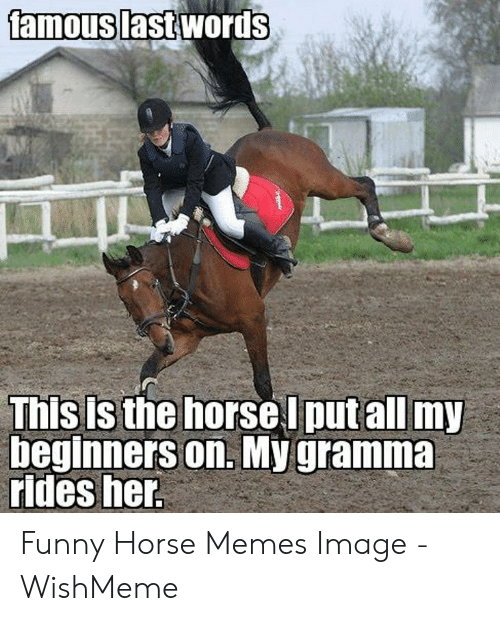 amouslast-words-this-is-the-horse-l-putall-my-beginners-53857531.png