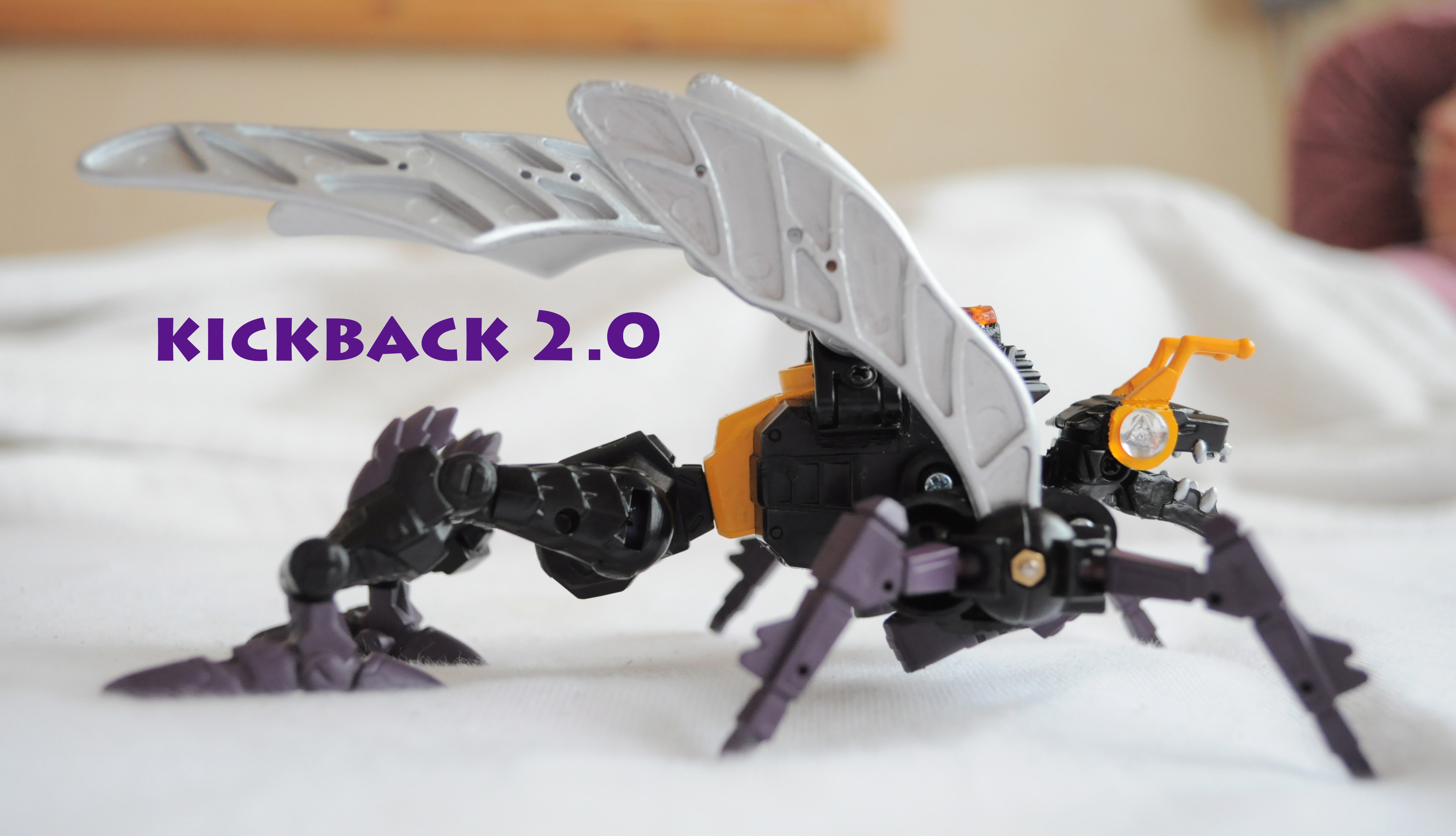 Classics 2.0 Insecticon Team completed!-dsc_5716.jpg