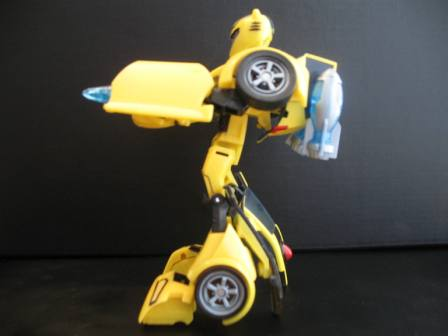 Get Rid of Animated Bumblebee's Rabbit Feet-img_2806.jpg