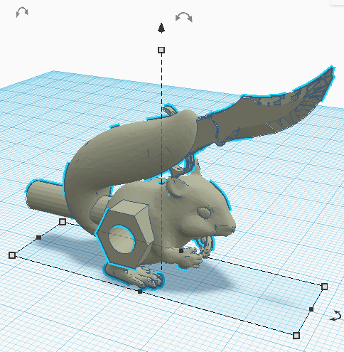 nuttyknifetail.png