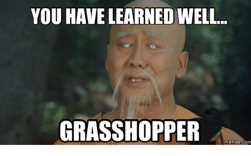 you-have-learned-well-grasshopper-memes-com-17713460.png
