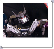 Transformers Customs